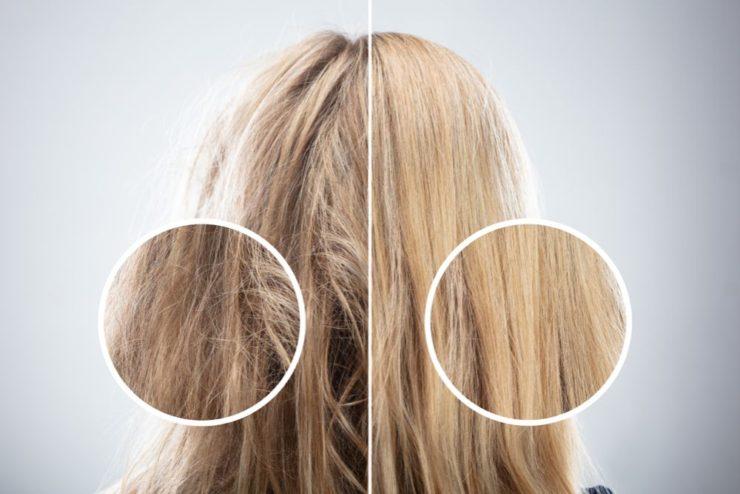 染めた髪の毛